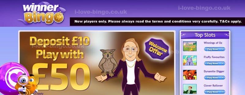 winner bingo review cover