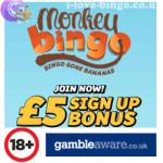 Monkey-Bingo-Logo.png